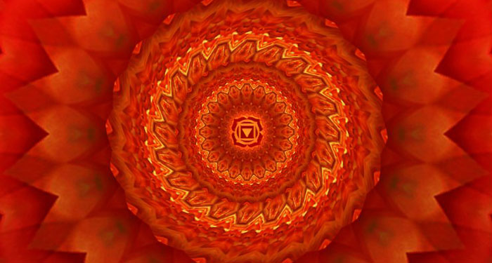 The Root Chakra: What is it about?